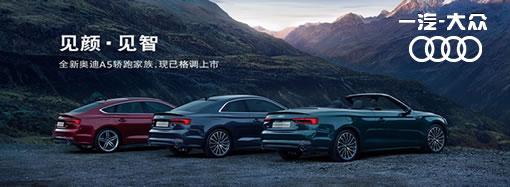 全新奥迪A5轿跑家族,高性能V6动力更强劲