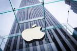 苹果将更多资产转至爱尔兰   无惧欧盟巨额追税