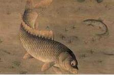 古画中的富贵有鱼图欣赏:仁者乐鱼,智者好鱼