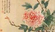 历代牡丹绘画名家作品欣赏