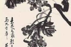 大师董寿平笔下的水墨葡萄【欣赏】