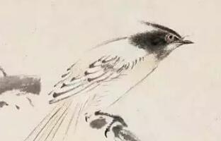 王雪涛画鸟的六项基本功