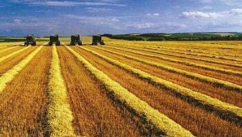 中国31省份全部出台农垦改革发展省级实施意见