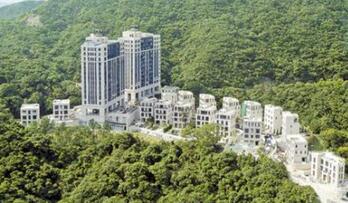 2017年香港50宗最大的豪宅成交中 内地是主要购买力来源