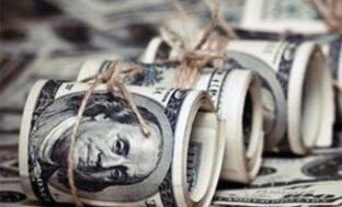 """美联储内部的""""鸽派""""战队再度发声:美元可能依然处于强周期内,今年存在反弹希望"""