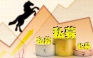 买私募上金斧子|私募投资攻略:如何挑选优质私募基金