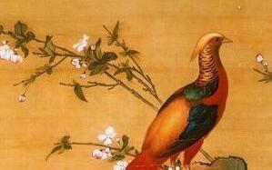 看看清宫顶级的鸟谱图,都是些什么鸟?
