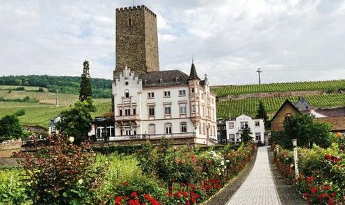 西班牙葡萄酒在华销量猛增 中国成其第五大市场