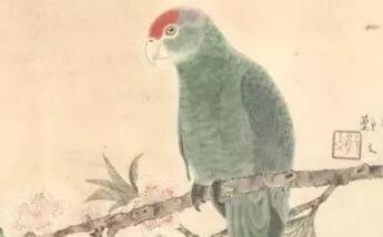 图文教程:花鸟小品十招简介