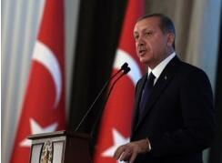 埃尔多安赢得52.5%的选票 连任土耳其总统