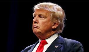 特朗普:美国移民法无论在世界上的哪个地方都是最笨的