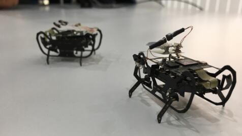 """飞机引擎制造商罗斯-罗尔斯研发微型""""蟑螂""""机器人 爬行内部修理引擎"""