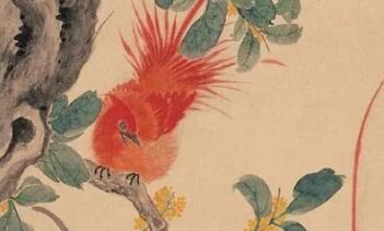 江寒汀工笔花鸟画欣赏