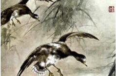 中国百年来50位重要花鸟画家作品欣赏