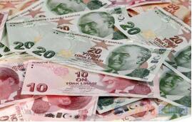 美元升至14个月高点  土耳其里拉下跌逾7%