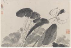 八大山人 (朱耷) 《荷花图册》 美国弗利尔美术馆藏