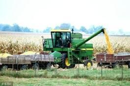 美国7月份美国农产品出口价格创近7年来最大跌幅
