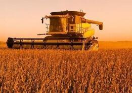 美国农户每人获得补贴不超过12.5万美元