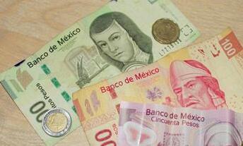 阿根廷总统请求IMF加快拨付贷款  比索汇率周三跌至历史最低水平