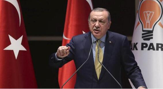 土耳其总统建议结束美元在国际贸易中的主导地位
