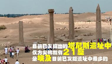 埃及考古新发现