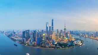 上海发布促进民营经济健康发展若干意见