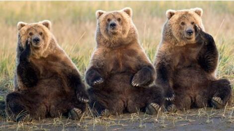 比特币比去年的高点下跌了80%以上,接近有史以来最糟糕的熊市