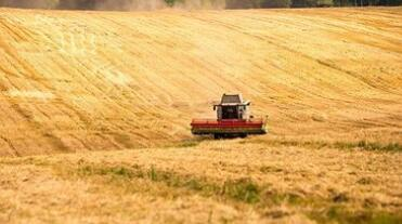 俄总理说俄拟进一步扩大农业出口规模