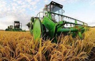 种植结构调整优化 2018年全国粮食产量保持高位水平