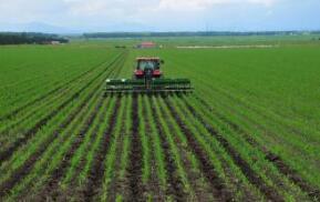 三大粮食作物化肥农药使用量零增长