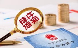 湘政办发〔2019〕19号湖南省人民政府办公厅关于印发《湖南省降低社会保险费率实施方案》的通知
