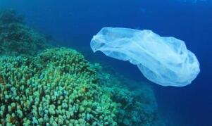 美国科学家研发出新型塑料 可重复回收利用