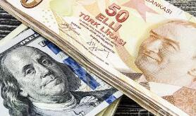 土耳其里拉兑美元上涨0.8%