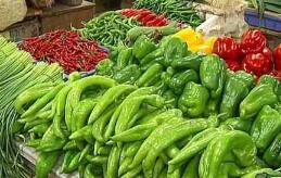 不利天气等多重因素致菜价小幅上涨