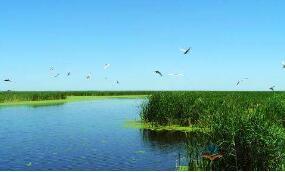 生态环境部启动第二批环渤海入海排污口现场排查工作