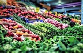 海南:确保12种蔬菜降价15% 猪肉降价15%至20%