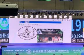 中国·贵州食用菌产业发展大会,中日韩专家讨论食用菌发展