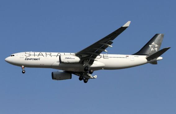 埃及航空公司因安全原因暂停全部飞巴格达航班