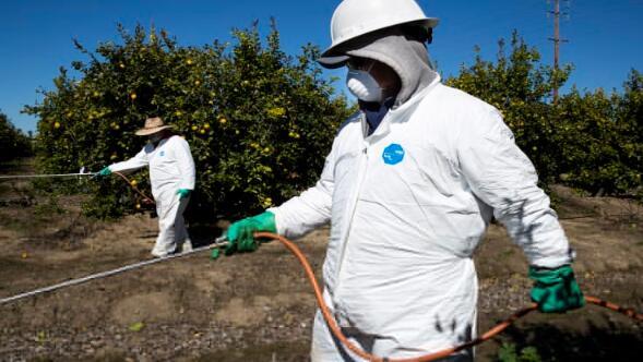 随着冠状病毒迫使农场停工,各国囤积粮食,粮食危机迫在眉睫