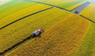 农业农村部 财政部关于公布2020年国家现代农业产业园创建名单的通知