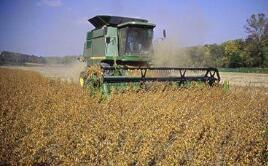 芝加哥期货交易所玉米、小麦和大豆期价27日涨跌不一