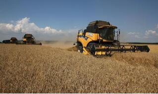 俄罗斯农业部计划将粮食出口配额制常态化
