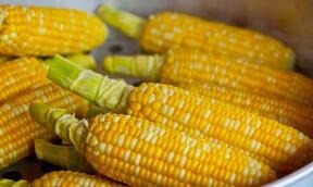 """9月16日:""""农产品批发价格200指数""""比昨天下降0.05个点"""