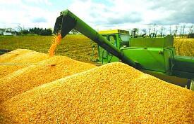 """9月21日:""""农产品批发价格200指数""""比上周五下降0.23个点"""