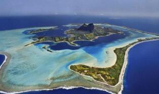 澳洲大堡礁珊瑚数量下降超50%
