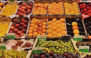 """11月4日:""""农产品批发价格200指数""""比昨天下降0.04个点"""