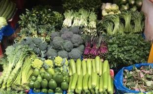 """11月10日:""""农产品批发价格200指数""""比昨天下降0.09个点"""