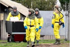 防范病毒变种风险 爱尔兰拟宰杀养殖貂