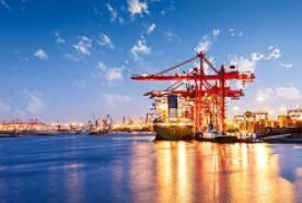 海关总署公告2020年第118号(关于发布《进出口税则商品及品目注释》修订内容(第六、七期)的公告)