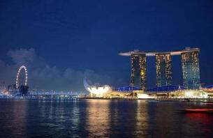 新加坡制造业去年产值增加7.3%